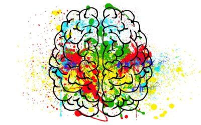 La créativité sous l'angle du cerveau